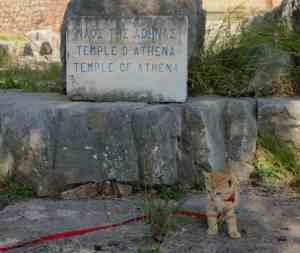 Delfi - Erwin am Tempel von Athene