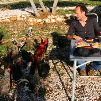 Hey Chicks - Frühstück in Tasucu
