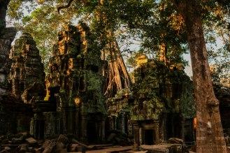 Ta Prohm Wat