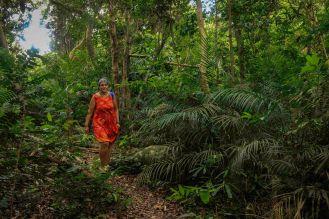 im Dschungel auf dem Weg zur Monkey Bay