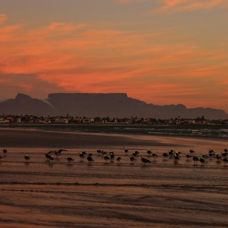 Kapstadt am Abend
